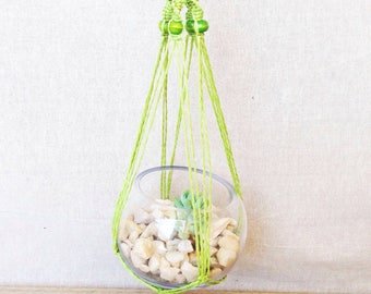 Green Macrame Hanger with Glass Sphere and Succulent, DIY Terrarium Kit, Succulent Terrarium, Hanging Plant, Green Thumb Gift, glass bowl.