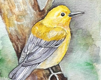 Bird painting  ORIGINAL watercolor  Bird Art  Painting Bird  Watercolor yellow bird  Wall art  Home decor