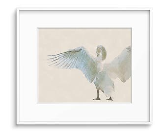 Swan Art Print, Bird Prints, Printable Art, Wildlife Prints, Swan Print, Bird Art, Watercolor Print, Painting, Wall Art, Art Prints, Prints