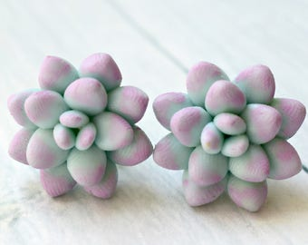 cactus earrings, earrings succulent, succulent earrings,  succulent stud, succulent flowers, jewelry mint earrings, earrings stud, polymer