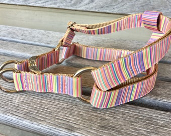 "Step-in Dog Harness, Choose Your Style, 1"" Wide Dog Harness, Medium or Large Breed Dog Harness"
