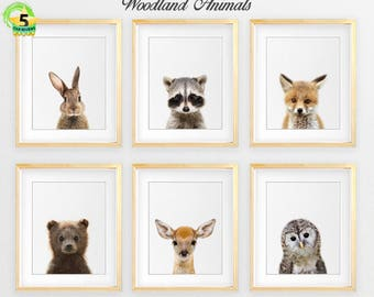 Woodland Animal Art Etsy