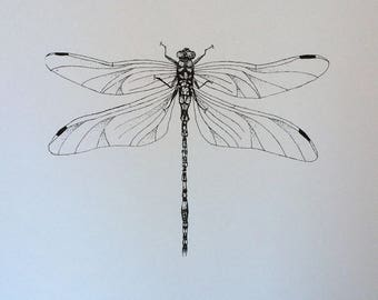 Dragonfly print