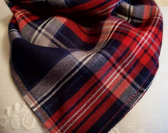 Blue and red plaid tie on dog bandana