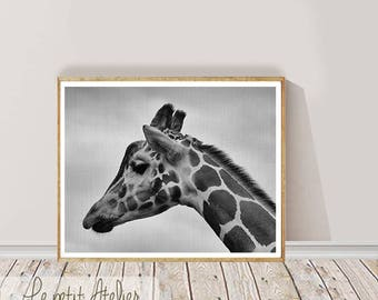 Girffe Print, Large Printable Wall Art, Black and White  Photography, Wall Decor, Digital Download,Giraffe Decor, Large Giraffe Poster Print