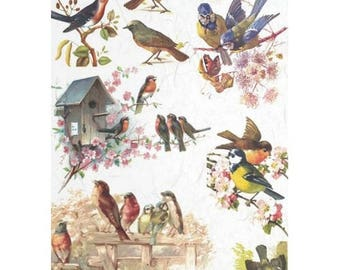 1 sheet of rice paper 21 x 28 cm decoupage collage birds 325