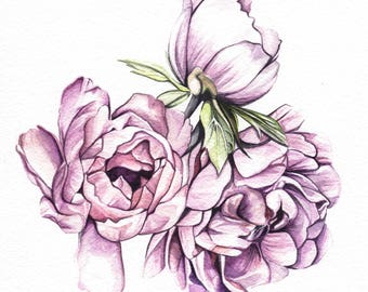 Original Floral Watercolour Painting, Peony Flower Watercolor Painting, Bunch of Peonies Art