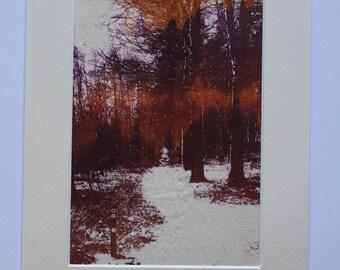 Screen print on calico, winter walk, trees, woodland, print, nature lover, gift, art