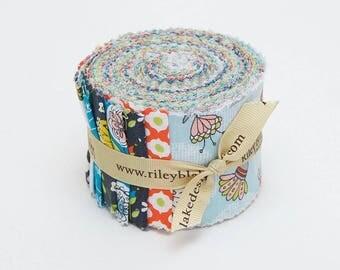 Dutch 2.5-inch Rolie Polie - 40pcs - Riley Blake Designs
