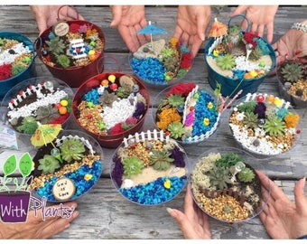 Fairy Garden Party Kit, Fairy Garden Kit, Fairy Garden Party, Fairy Garden Kits, Terrarium Kit, Succulent Fairy Garden kit