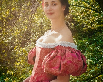 1890 Victorian Dress