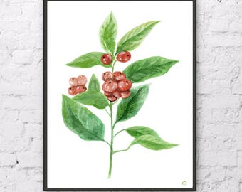 Coffee Plant print Coffee Leaf watercolor print Coffee plant painting Coffee beans plant Tropic Leaf Coffee home decor Coffee leaf decor