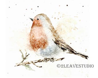 Robin Art Print, Red Robin Watercolor Painting, Bird Lover Gift, Nature Lover Gift, Original Artwork, Robin Decor, Original Drawing