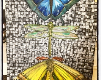 Little Creatures : Original Oil Pastel artwork of a Butterfly, Dragonfly and Moth