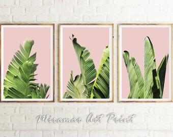 Banana Leaves Print, Banana Poster, Palm Leaf Artwork, Designer Wall Art, Leaf Photographs, Tropical Foliage, Botanical Art, Leaves Poster