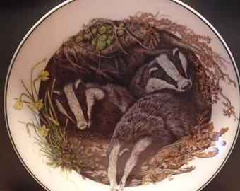 Wedgwood The Baby Animal Collection The Badger Decorative Collectors Plate, Home Decor, Collectible Plate, Wall Decor, 1990, Vintage