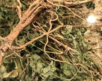 Guinea Hen Weed (Anamu)