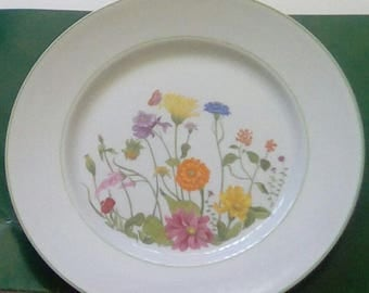 Discontinued Denby Wonderland Dinner Plate