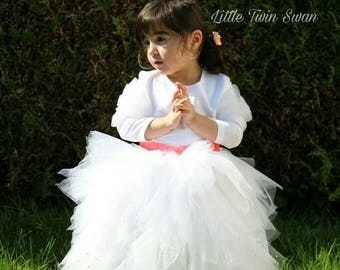 Ceremony, baptism, princess dress, wedding, parade, photo shooting session
