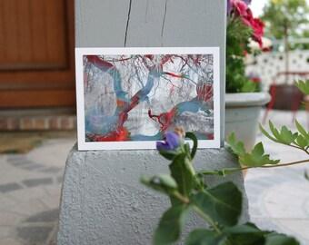 "Postcard ""Harlequin trees"""