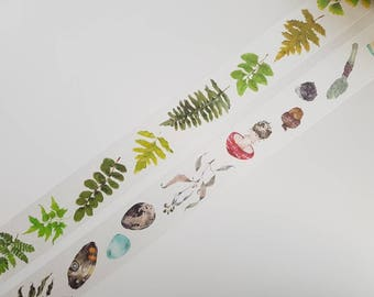 1m ferns or tape walk into forest washi