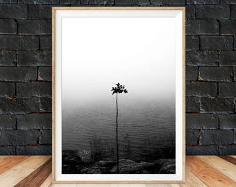 Nature Art Poster, Black and White Extra Large Wall Art, Printable Lake House Decor, Modern Large Print, Coastal Decor Print, Poster Nature