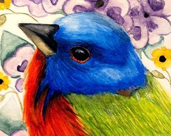 Painted Bunting Bird Audubon Ornithology Portraits Bird Paintings 8x10 Print of Original Watercolor