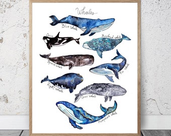 Watercolor Whales Print Sale Kids Room Decor Nursery Boys Nautical Ocean Print Whale Illustration Whale Poster Whale Wall Decor Whale Art