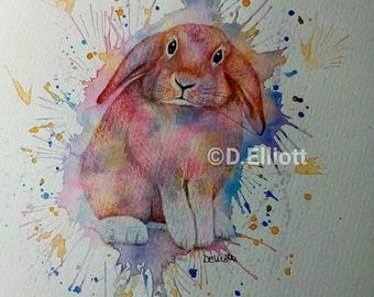 Watercolour and Pencil painting of a Lop Eared Rabbit
