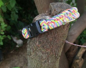 Rainbow Fishtail Dog Collar, With Ring For Tags,