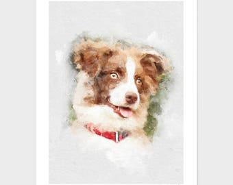 Border Collie Watercolor Portrait, Dog Painting, Pet Portraits