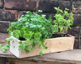Rustic herb planter - reclaimed wood - pallet wood