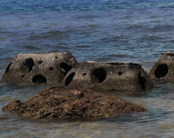 Stones in Water on FLorida Shore Line
