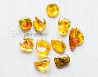 10 units Wholesale amber pieces. Baltic amber stones for jewelry making. Natural amber. Loose gems. SM39