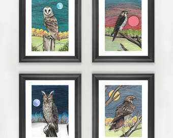 Birds of Prey Miniature Print Collection - Bird Art, Prints, Owls, Hawk, Falcon , Miniature Art, Raptors, Ornithology, Original Artwork