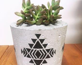 Concrete cement succulent & cactus planter