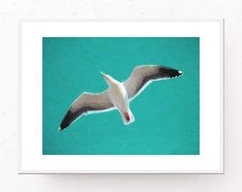 Seagull Print - Turquoise Decor, Digital Download, Ocean Print, Beach Wall Art, Beach Decor, Seagull in Flight Print, Printable Wall Art