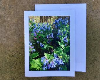 Bluebells Notecard - Blank Inside - Ships free!