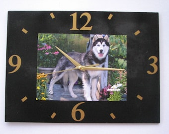 Clock / wall clock in Slate: dog