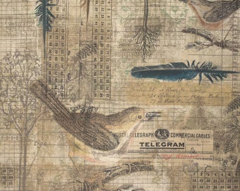Eclectic Elements - Tim Holtz - Aviary - PWTH034