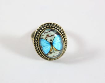 blue butterfly cabochon Adjustable ring