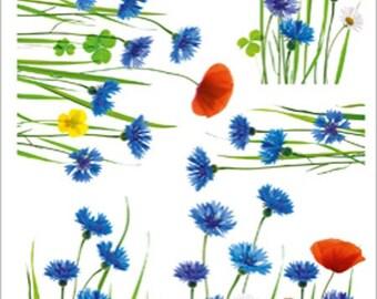 LARGE STICKERS ELECTROSTATIC glass window * flowers BLUEBERRIES 67cm