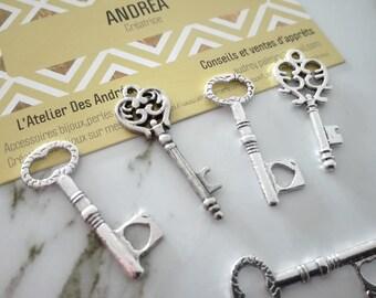 Set no. 8 ☆ / x 5 silver metal key / shapes mixtes☆