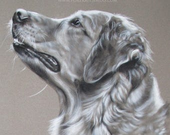 Custom Dogportrait charcoal drawing from your favorite photo