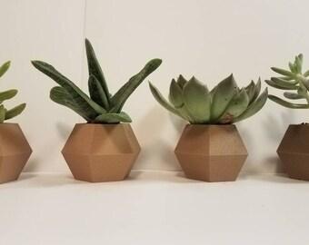 Minimalist Simple Hexagon Succulent Planter - Succulents, Small Plants