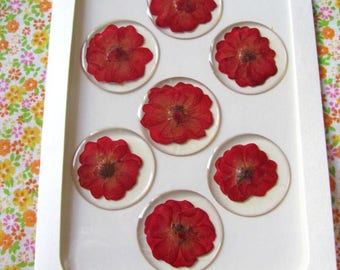 Card 7 Stickers flowers pressed red 30 mm. Scrapbooking