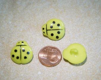 Ladybug lime button