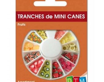 Mini sliced canes fruit DTM