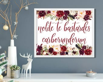 Don't Let the Bastards Grind You Down - Nolite Te Bastardes Carborundorum - Handmaids Tale Quote 8x10 Print - The Handmaid's Tale Art