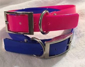 Bright Plastic- Coated Nylon Dog Collars!
